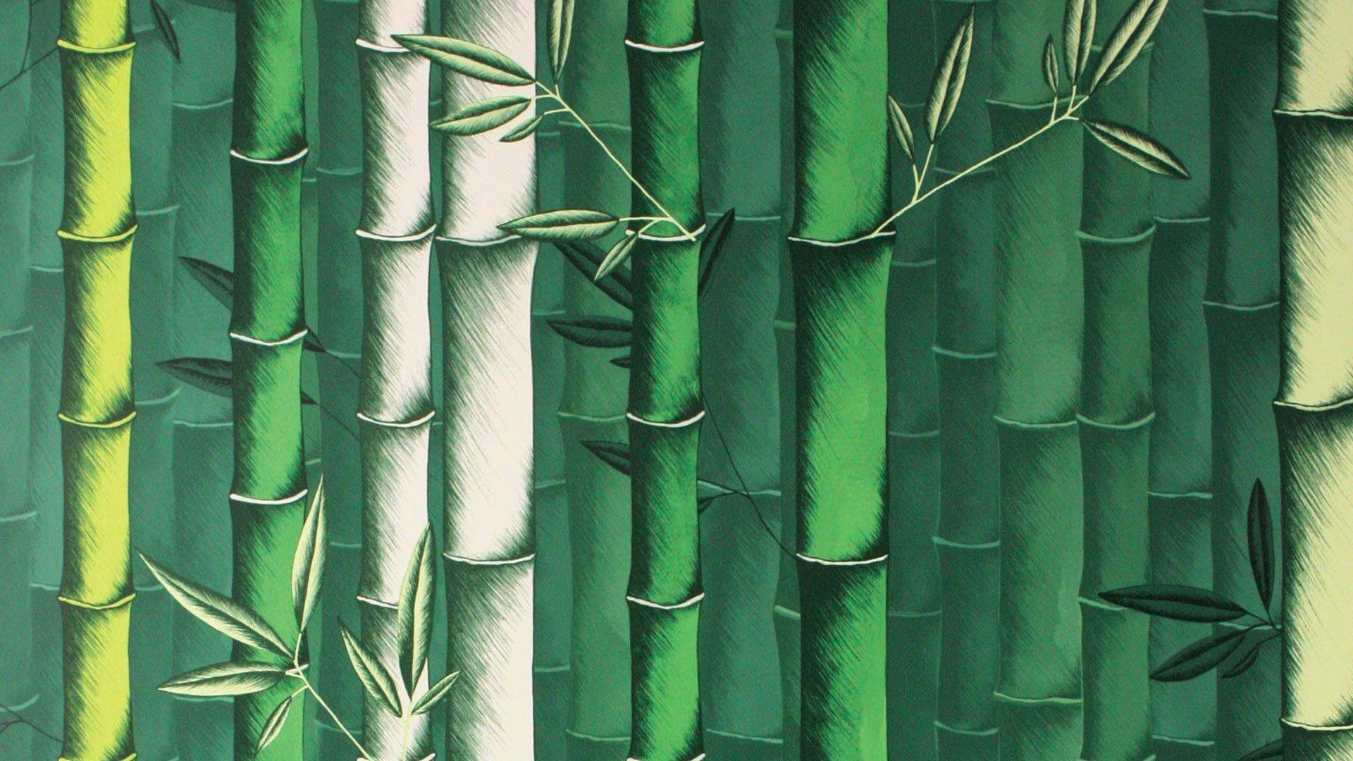 carta-da.parati-bambu